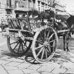 Foto d'epoca carretto siciliano