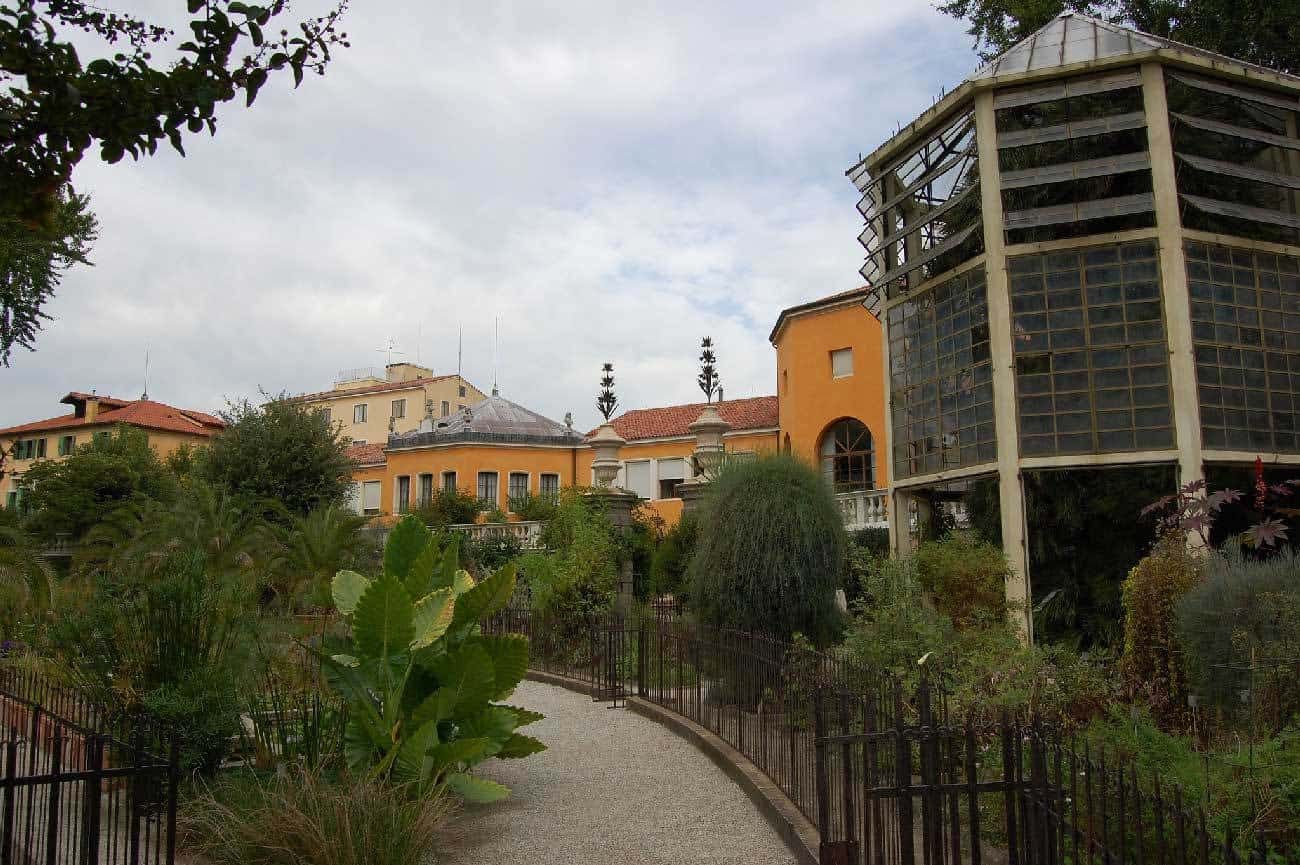 Padova: Orto botanico