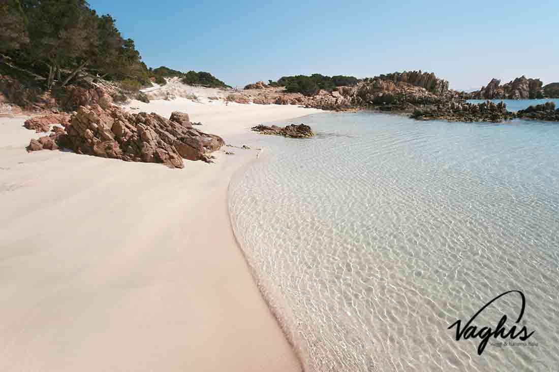 Spiaggia rosa della Maddalena - © Vaghis - viaggi & turismo Italia - Tutti i diritti riservati