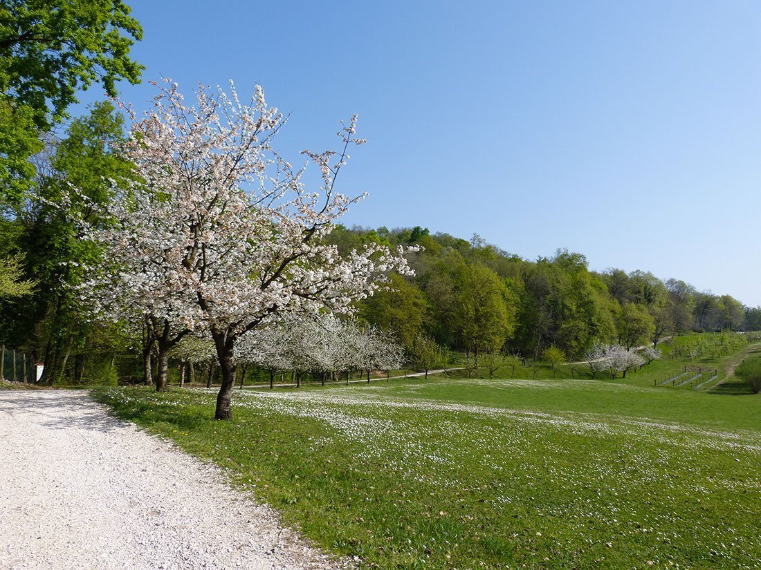Polcenigo: Parco di San Floriano