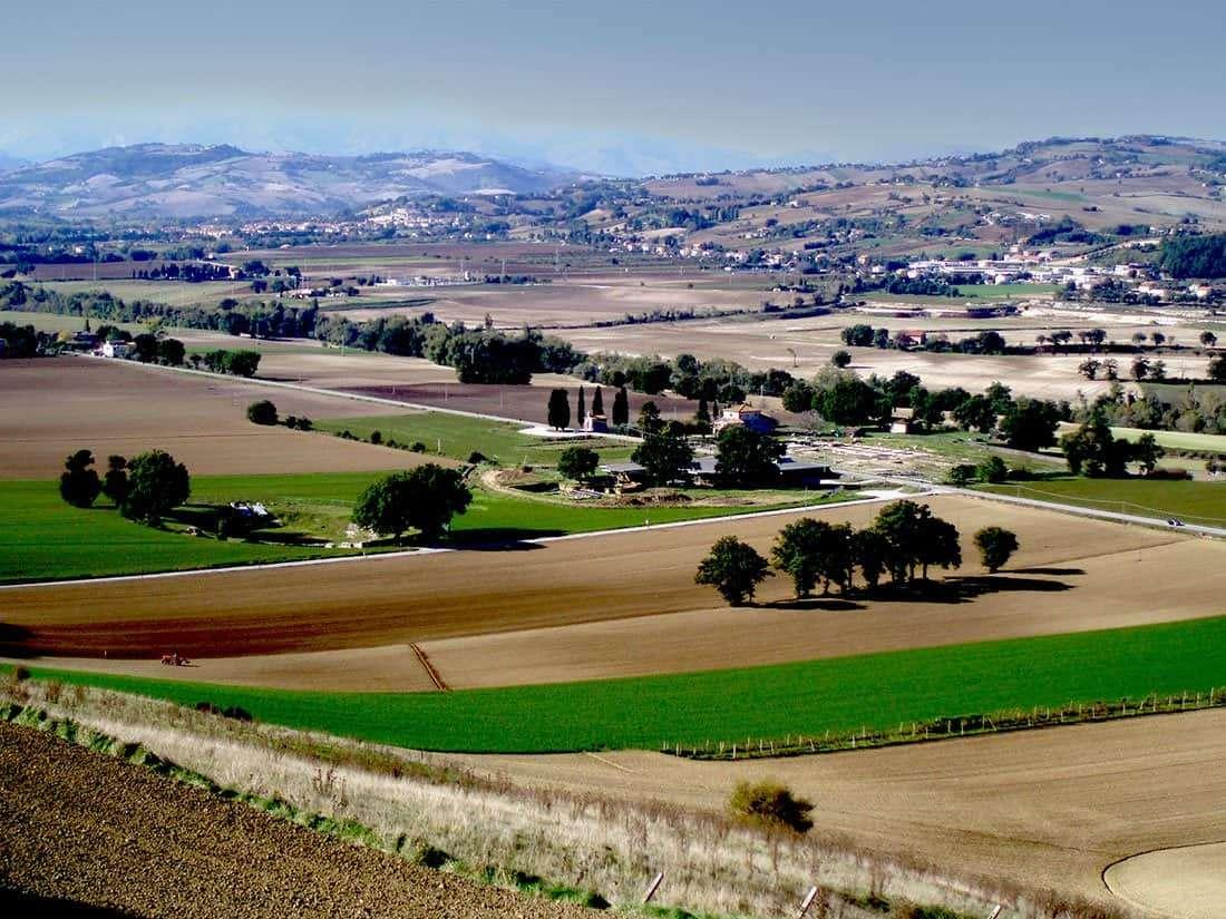 Castelleone di Suasa: parco archeologico
